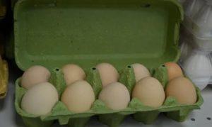 Яйца пахнут антибиотиками